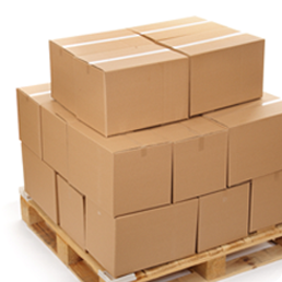 Starting a Storage Solutions Business in Singapore