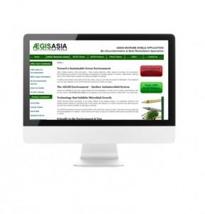 testimonials-aegisasia-company-incorporation