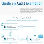 audit-exempt-thumb