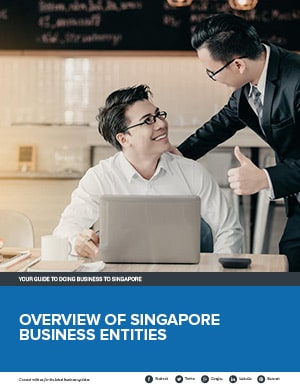Overview of Singapore Business Entities