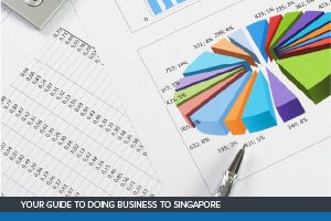 Singapore Corporate Tax Guide