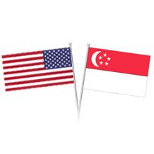 Ease of Doing Business: Singapore vs USA