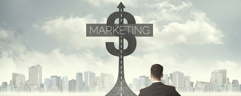 how much money you will spend annually on marketing