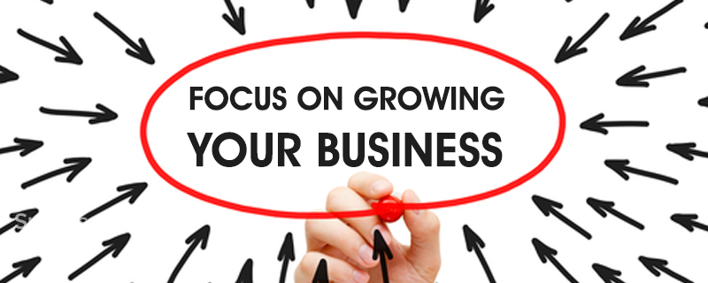 Focus on growing your business