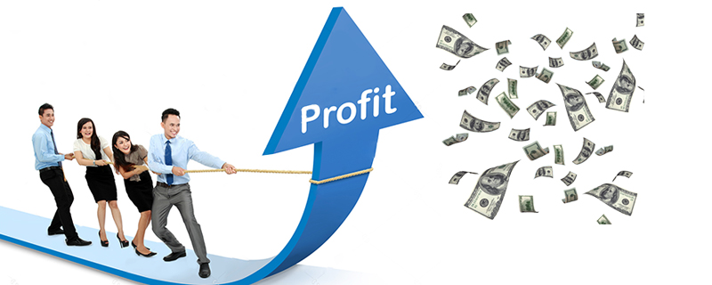 Make Profitability a must