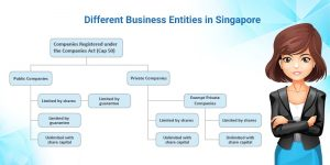 business types in Singapore