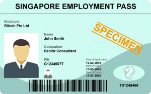 What is a Singapore Employment Pass