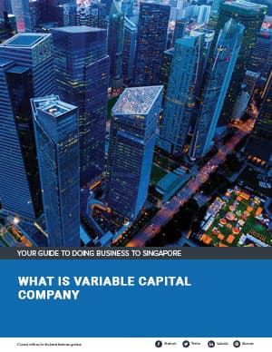 Guide to Singapore Variable Capital Company 2020