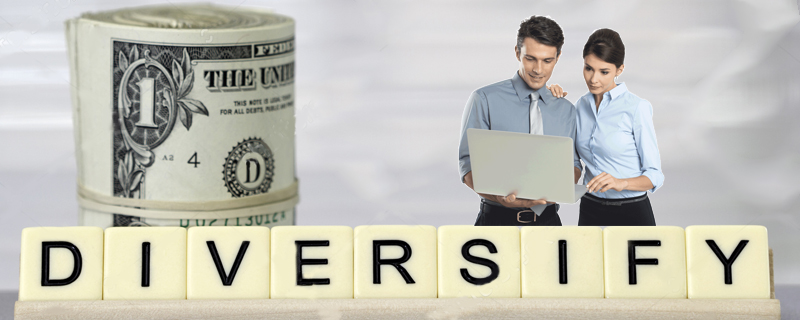 Diversify-your-offering Growing from a Small Business to a Billion Dollar Company