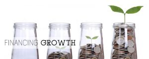 Financing-Growth-300x120 How to Grow Your Business