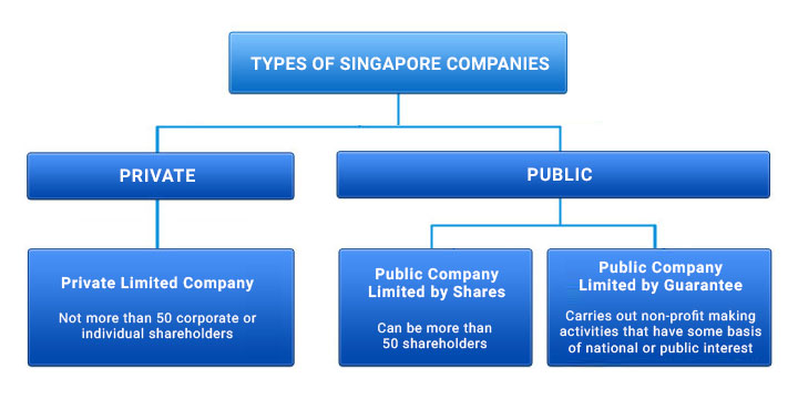 Types-of-Singapore-incorporated-companies Singapore Private Limited Company Registration