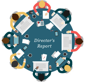 director's annual report
