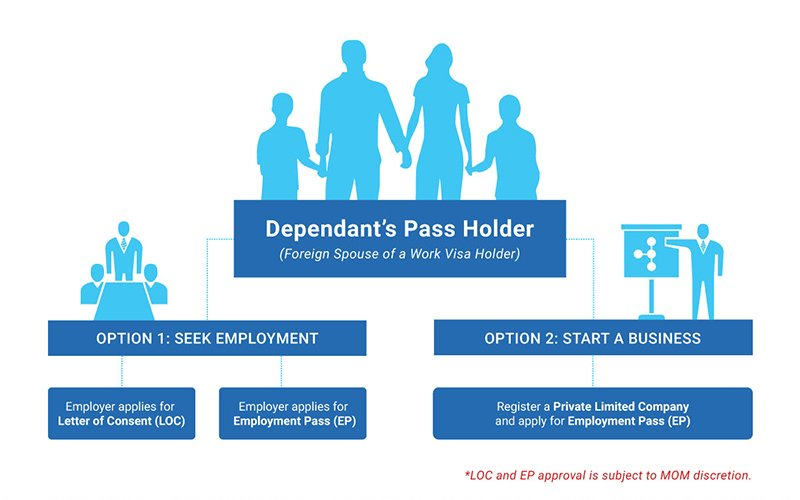 options-for-singapore-dependants-pass-holders Options for Dependant's Pass Holders in Singapore