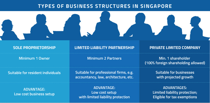 type of business structures in Singapore